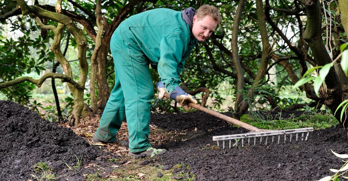 Garten und landschaftspflege gdw genossenschaft der for Garten und landschaftspflege
